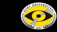 Siirt Üniversitesi Yaz Dönemi Formasyon İlanı